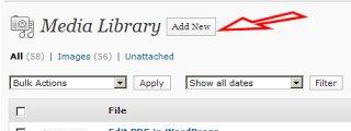 Upload a PDF to WordPress